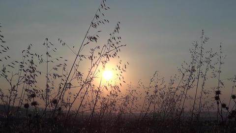 Sunrise 12 stock footage