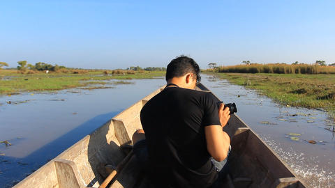 birdwatcher working on the boat trip in the bird swamps Live Action