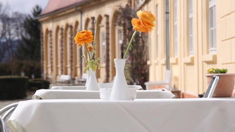 Flowers On The Summer Terrace A Castle 01 stock footage