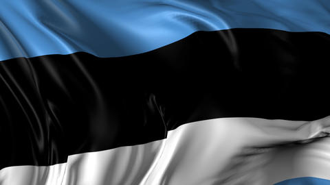 Flag of Estonia Animation