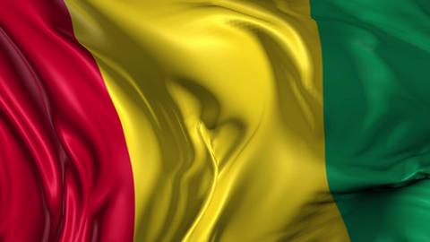 Flag of Guinea Animation