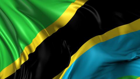 Flag of Tanzania Animation