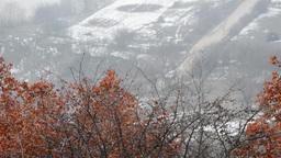 Winter landscape 01 Footage