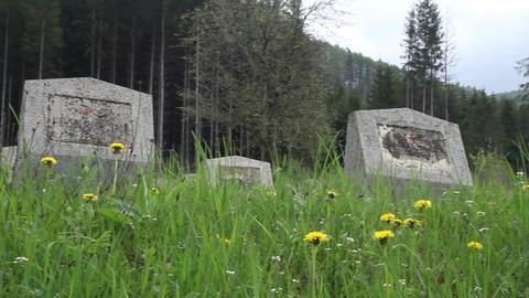 Militar cemetery 19 Footage