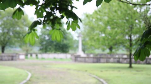 Militar cemetery 33 Footage