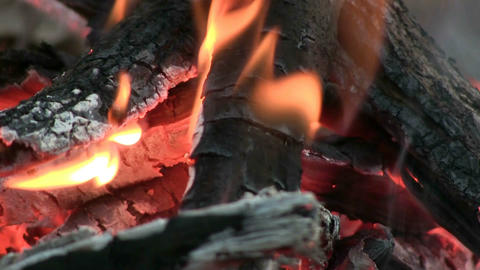 Camp Fire Macro Stock Video Footage