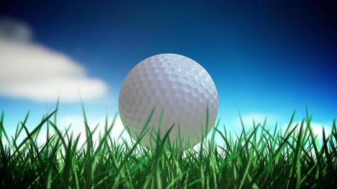 Golf ball loop Animation