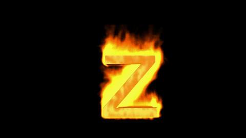 fire letter z Stock Video Footage