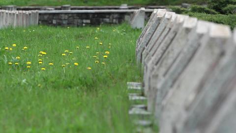 Militar cemetery 11 Footage
