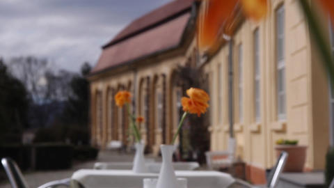 Flowers on the summer terrace a castle 04 Footage