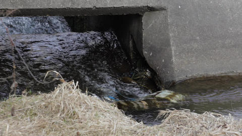 Torrent of water 14 Footage