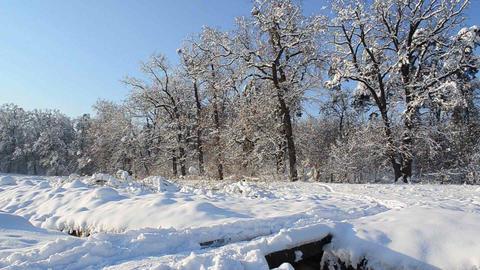 Winter landscapes 6c Footage