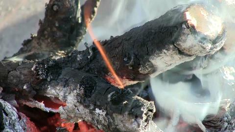 Camp Fire Macro Stock Video Footage