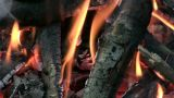 Camp Fire Macro stock footage