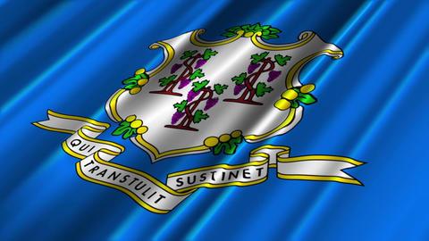 Connecticut Flag Loop 02 Stock Video Footage
