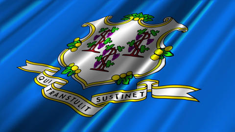 Connecticut Flag Loop 02 Stock Video Footage