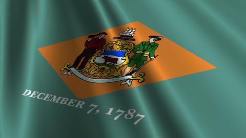 Delaware Flag Loop 03 Stock Video Footage
