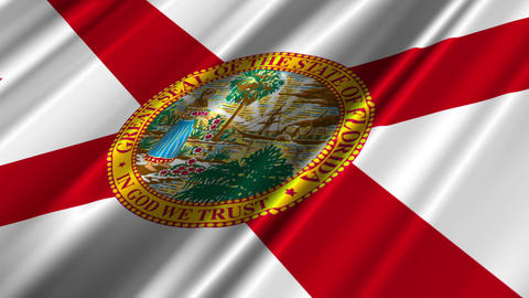 Florida Flag Loop 02 Stock Video Footage