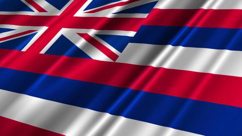 Hawaii Flag Loop 02 Stock Video Footage