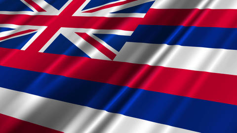 Hawaii Flag Loop 02 Stock Video Footage