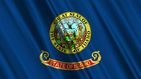 Idaho Flag Loop 01 Stock Video Footage