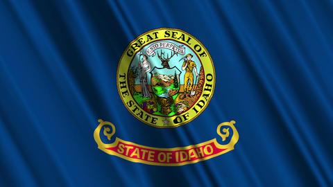 Idaho Flag Loop 01 Stock Video Footage