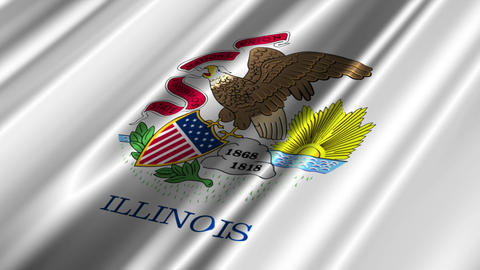 Illinois Flag Loop 02 Stock Video Footage
