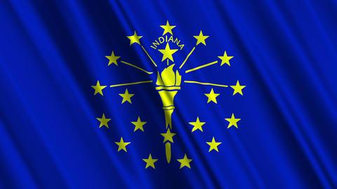 Indiana Flag Loop 01 Stock Video Footage