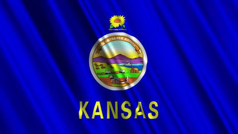 Kansas Flag Loop 01 Stock Video Footage