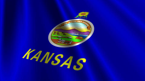 Kansas Flag Loop 03 Stock Video Footage