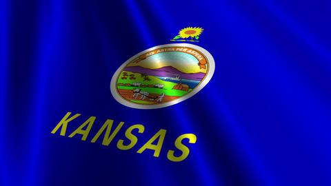 Kansas Flag Loop 03 Stock Video Footage