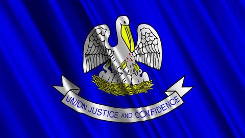 Louisiana Flag Loop 01 Stock Video Footage