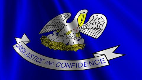 Louisiana Flag Loop 03 Stock Video Footage