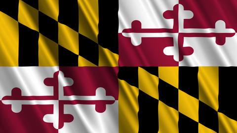 Maryland Flag Loop 01 Stock Video Footage