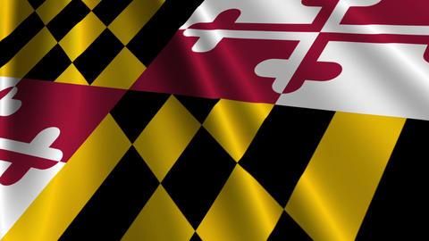 Maryland Flag Loop 03 Stock Video Footage