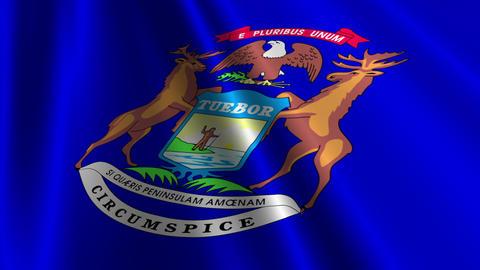 Michigan Flag Loop 03 Stock Video Footage