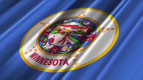 Minnesota Flag Loop 02 Stock Video Footage