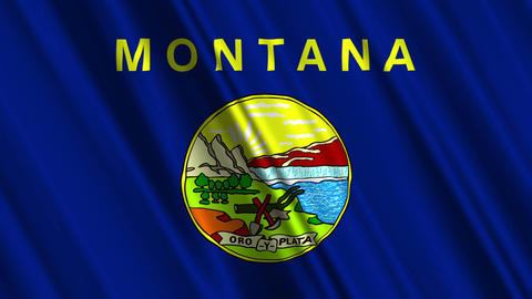 Montana Flag Loop 01 Stock Video Footage
