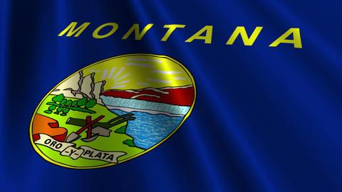 Montana Flag Loop 03 Stock Video Footage