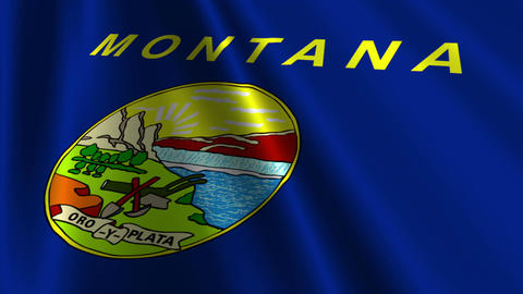Montana Flag Loop 03 Stock Video Footage