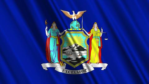 New York Flag Loop 01 Stock Video Footage