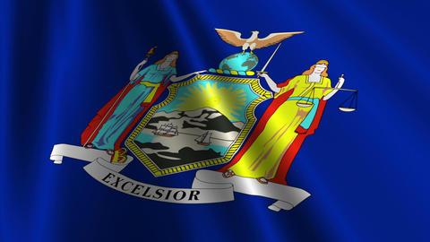 New York Flag Loop 03 Stock Video Footage