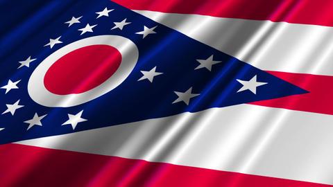 Ohio Flag Loop 02 Stock Video Footage