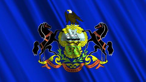 Pennsylvania Flag Loop 01 Stock Video Footage