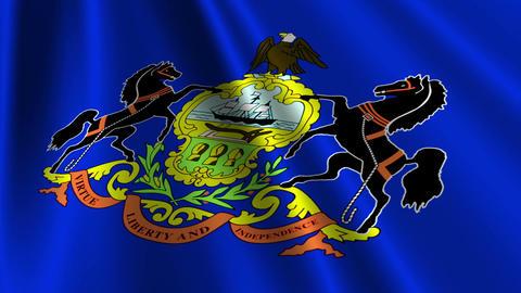 Pennsylvania Flag Loop 03 Stock Video Footage