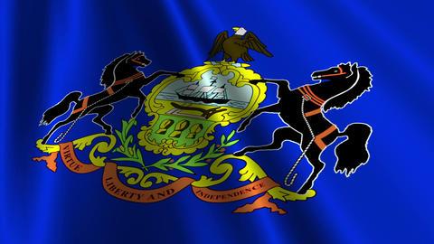 Pennsylvania Flag Loop 03 Animation