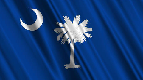 South Carolina Flag Loop 01 Stock Video Footage