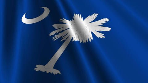 South Carolina Flag Loop 03 Stock Video Footage