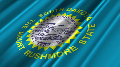 South Dakota Flag Loop 02 Stock Video Footage