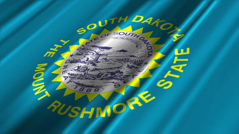 South Dakota Flag Loop 02 Stock Video Footage